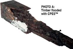 CPES Soaked Wood