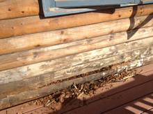 Customer Comments Wood Preservation Rot Repair And