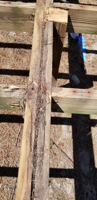Close up of the joist near the center post